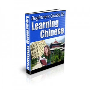 Beginners Guide to Learning Chinese